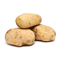 patata-kenebec