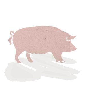 Porc de proximitat