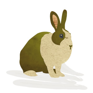 Conill de Proximitat